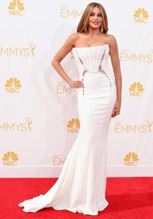 Emmys-2014-6-Sofia-Vergara
